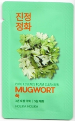 Holika Holika Pure Essence Mugwort Foam Cleanser - VZOREK